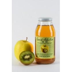 Bottiglie mela-kiwi da lt.0,500